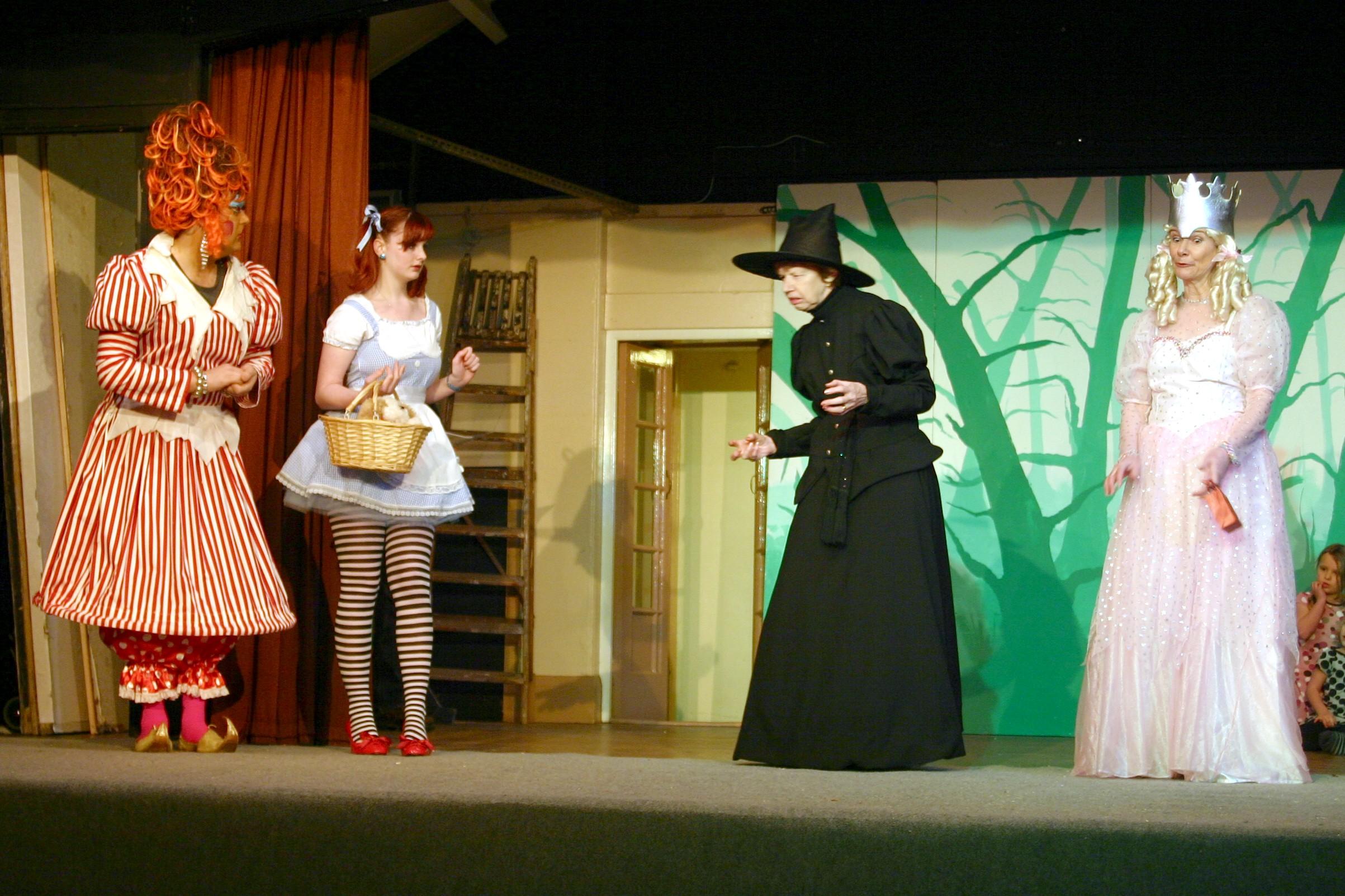 1001 Cinderella (11)